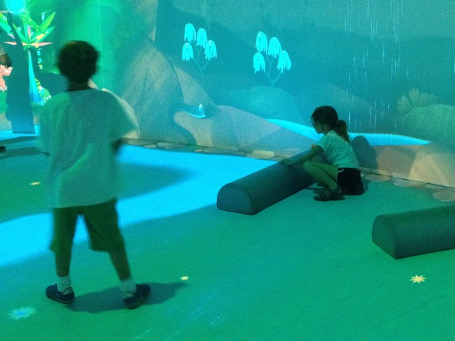 Directing the water with logs, Connected Worlds, New York Hall of Science, 2015