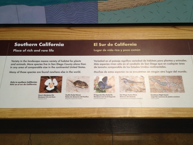 Bilingual label rail, Coast to Cactus, San Diego Natural History Museum, 2015